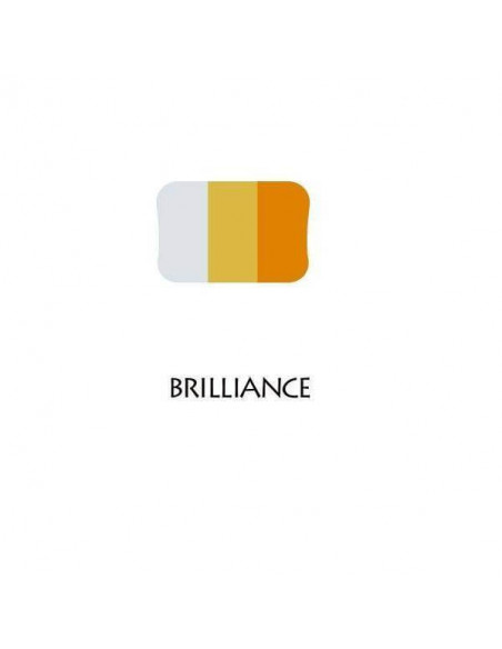 ALMOHADILLA BRILLIANCE DE 3 COLORES 95 X 65 MM