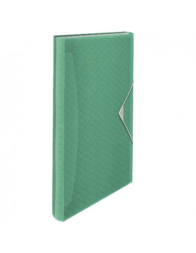 CARPETA DE ACORDEON ESSELTE FABRICADA EN POLIPROPILENO CON 6 COMPARTIMENTOS COLOUR ICE VERDE