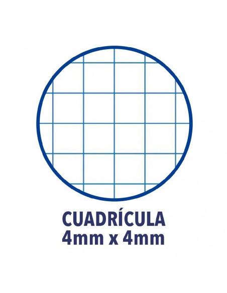 RECAMBIO FOLIO CUADRICULA DE 4X4 MM100 HOJAS OXFORD